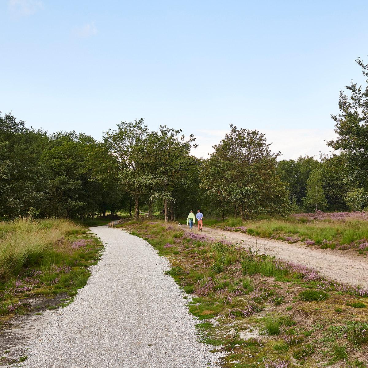 Regte Heide - wandelen